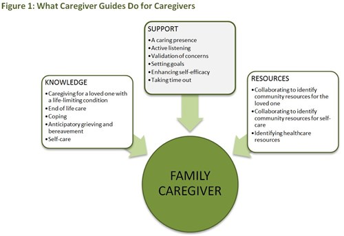 Caregiver Guide - Figure 1